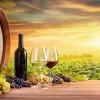 Вино - добър вкус, освободител на духа и озарител на ума!